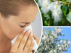 Як боротися з алергією?