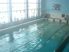 Житомиру дають 25 мільйонів гривень на будівництво басейну. Влада ніяк не вибере місце
