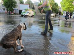 У вихідний день Житомир залишився без води через великий порив водопроводу. ФОТО