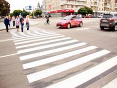 У Житомирі на пішохідні переходи наносять пластикову розмітку. ФОТО
