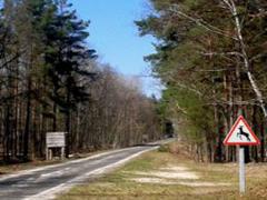 Депутати вирішили перевірити, як використовуються мисливські угіддя в Житомирської області