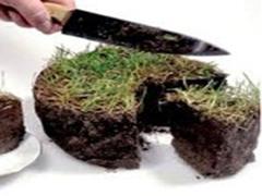 Земельний колапс: в 2014 році житомиряни не зможуть укладати земельні договору. ВІДЕО