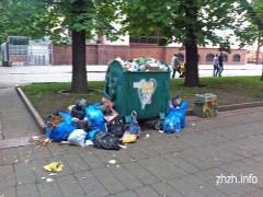 У Житомирі на Старому бульварі проблема з вивезенням сміття? ФОТО