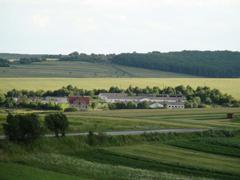Суд зобов'язав повернути державі 10 га землі в Житомирській області