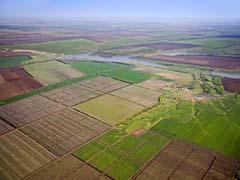 Житомирська охорона земель
