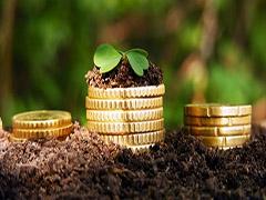 У Житомирі плата за землю знову зросла