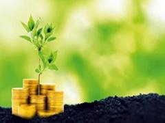 На Житомирщині оновлено нормативну грошову оцінку землі