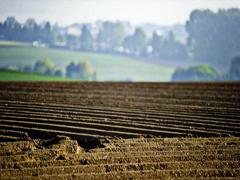 Мораторій на продаж землі в Україні
