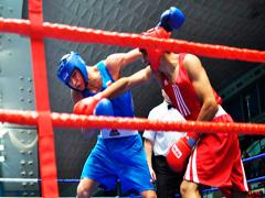 Перемога Житомирських боксерів