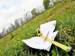 У Любарі ПТУ незаконно передало 100 га землі