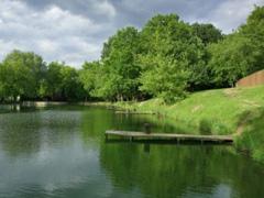 Надання в оренду водних об'єктів