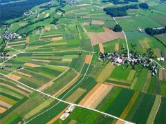Проекти землеустрою можна погоджувати онлайн
