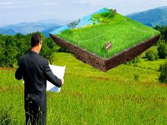 Яку орендну плату отримали власники земельних паїв?