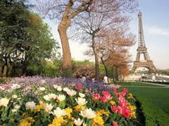 Французька весна 2017 Києві