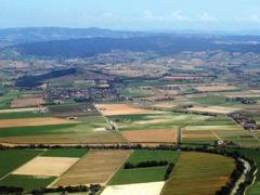 Стан опрацьованих проектів землеустрою