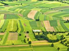 Стан власності земельних ділянок області