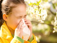 Як боротися з алергією на цвітіння?
