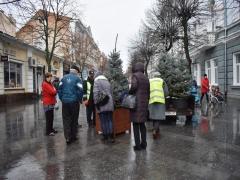 Єдину в Житомирі пішохідну вулицю продовжуть прикрашати до новорічних свят: лавки тимчасово прибрали, а на їх місці встановлюють ялинки