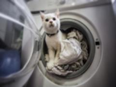 Як часто прати постільну білизну, ковдри та подушки